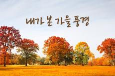 내가 본 가을 풍경